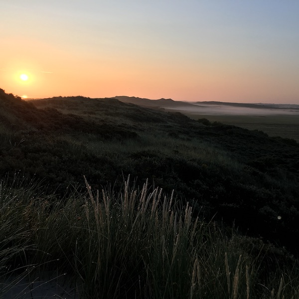 Dunes of the Dutch island Terschelling at summer sunrise